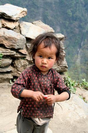 Гималайский взгляд